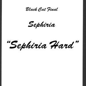 Black Cat Doujinshi - Black Cat Final Sex Comic Hentai Manga 007